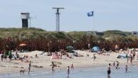Den danske app Badevand kan vise dig temperaturen i både vandet og luften på den nærmeste strand og samtidigt visevejen dertil.
