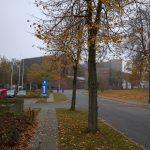Foto taget en grå efterårsdag med Nexus 6P (Foto: MereMobil.dk)