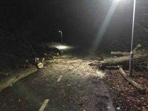 Følger fra stormen Gorm (Foto: Brandvæsener i DK)