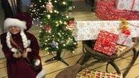 Mobiler er en gave, der er ofte ligger under de danske juletræer. Se her hvilke der i år ligger under juletræerne.
