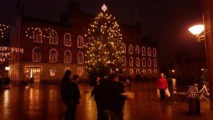 Juletræet 2015 på Flakhaven i Odense (Foto: MereMobil.dk)