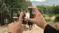 Sonys nyeste topmodel, Xperia X Performance, har aktuelt et af de bedste mobilkameraer, viser stor uafhængig test.