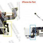 Billede fra GSMArena.com af indmaden i iPhone 7 og iPhone 6S