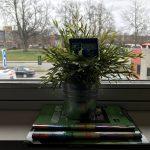 HDR-billede taget med HDR-funktionen i iPhone 7 Plus (Foto: MereMobil.dk)