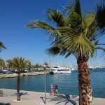 Palma på Mallorca (Foto: MereMobil.dk)