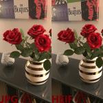 Sammenligning JPG HEIF