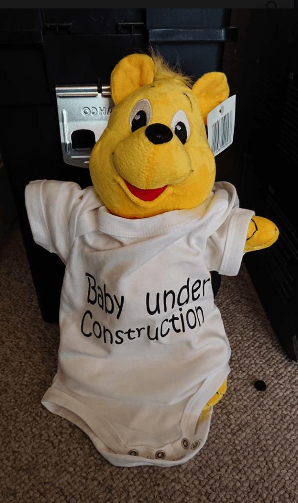 Billeder kan bruges til mange ting. Dette billede har Tine Jørgensen brugt, da hun offentliggjorde hendes graviditet. Billedet er taget med en Sony Xperia XZ2. (Foto: Tine Elisabeth Jørgensen)