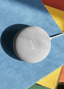Nest Mini (Foto: Google)